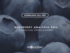 producepay-white-paper-analysis-2021-blueberry